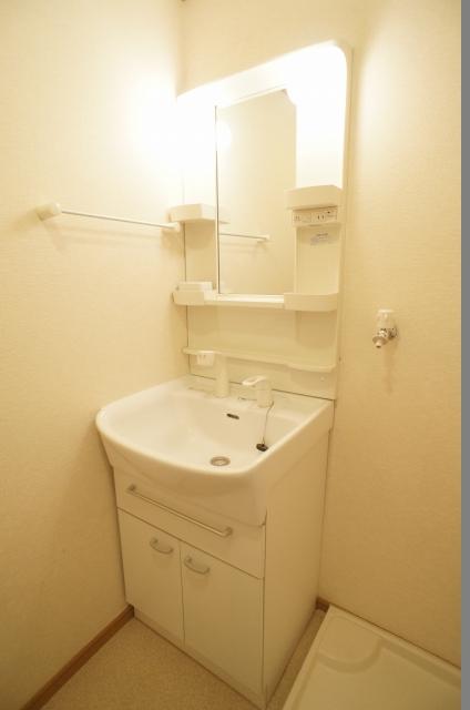 スプリングヒルズ 02060号室の洗面所