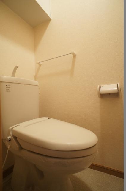 スプリングヒルズ 02060号室のトイレ