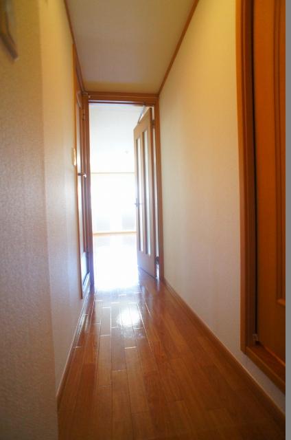 スプリングヒルズ 02060号室の玄関