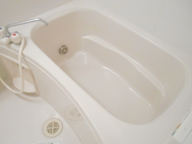 メゾン ラフィネ 02010号室の風呂