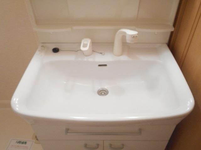 メゾン ラフィネ 02010号室の洗面所