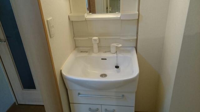 カスタナール 02080号室の洗面所