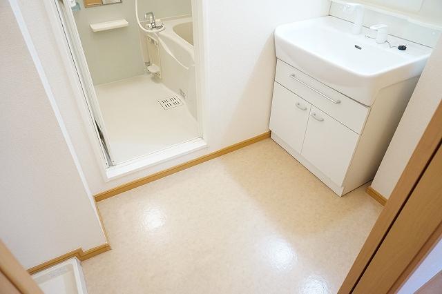 プリミエールレジデンスⅠ 01010号室の洗面所