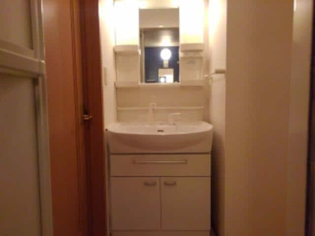 センター・フィールド 01040号室の洗面所