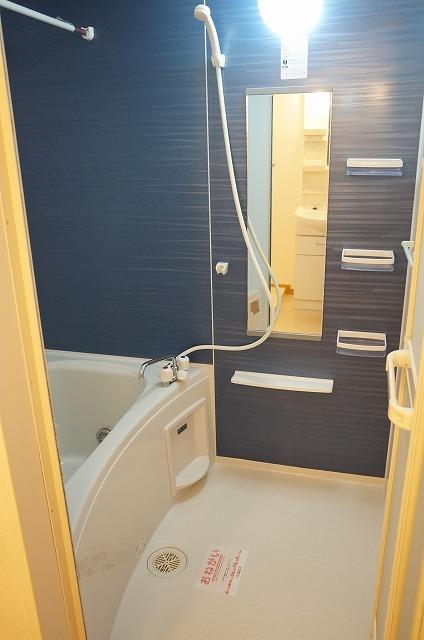 センター・フィールド 02040号室の風呂
