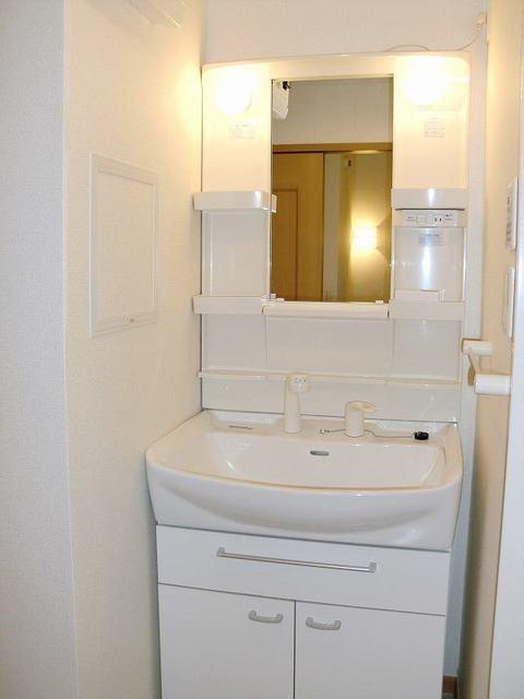 ブルックホーム 02020号室の洗面所