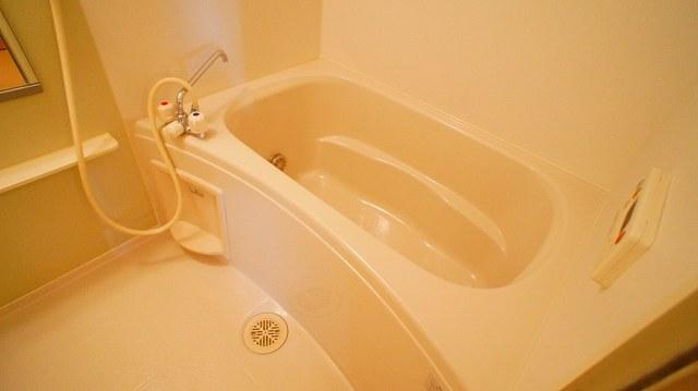 モンティセロ 01010号室の風呂