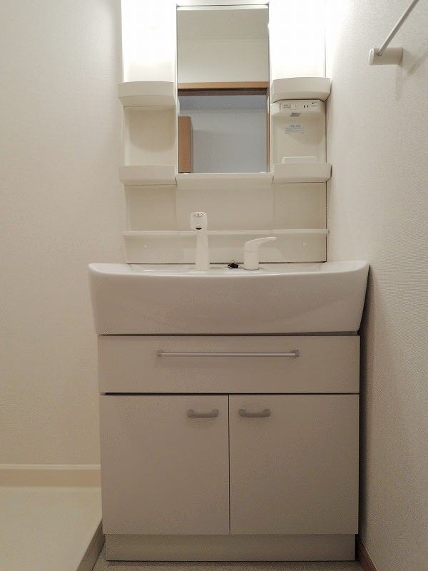 スプリングワットC棟 01010号室の洗面所