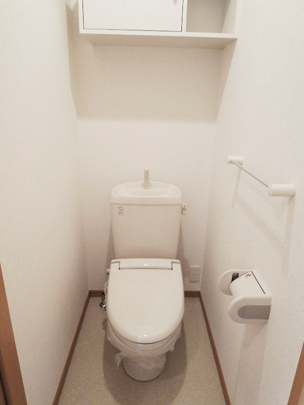スプリングワットC棟 01010号室のトイレ