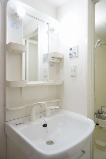 メルヴェーユ 08010号室の洗面所