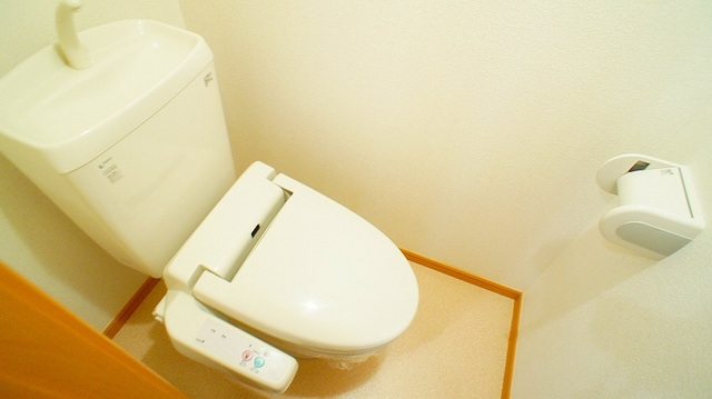 ハピネス北上尾 03030号室のトイレ