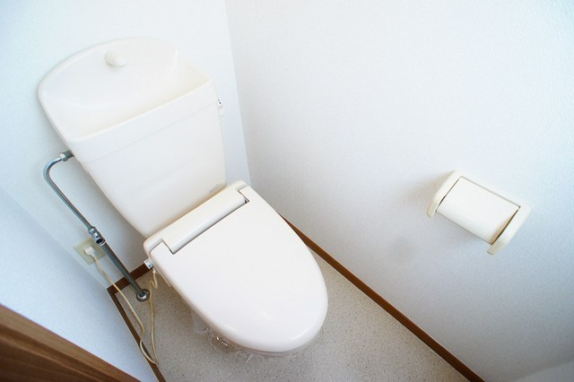 ファミ-ルメゾンC 01010号室のトイレ