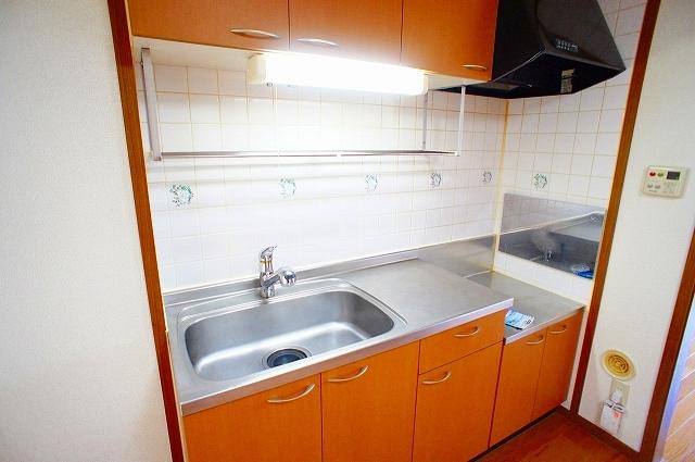 ファミ-ルメゾンC 01030号室のキッチン