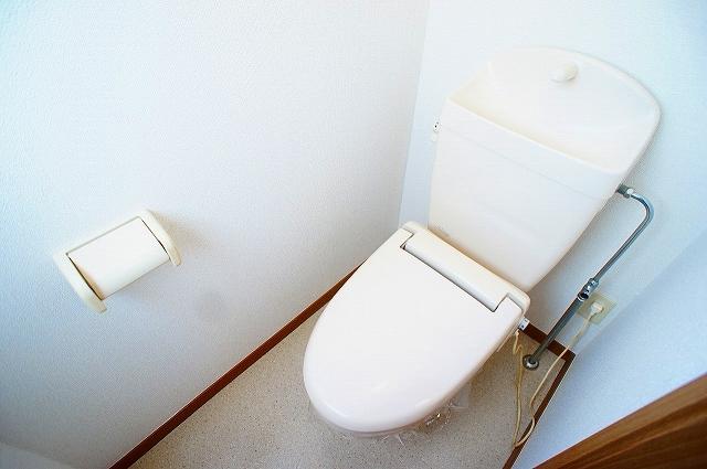 ファミ-ルメゾンC 01030号室のトイレ