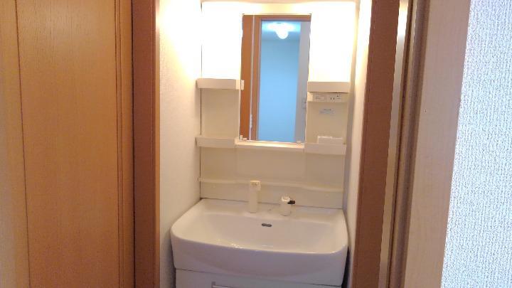 ベルマ-シュ 01010号室の洗面所