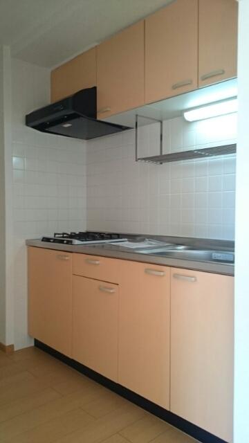 ゴールドレジデンスⅡ 04030号室のキッチン