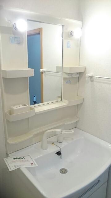 ゴールドレジデンスⅡ 04030号室の洗面所