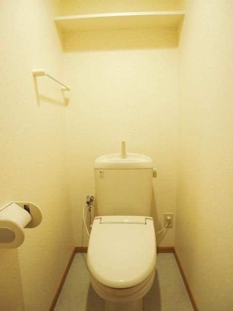 ゴールドレジデンスⅡ 04030号室のトイレ