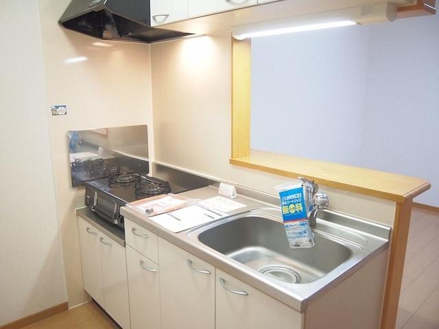 メゾンキャッスルⅡ 02010号室のキッチン