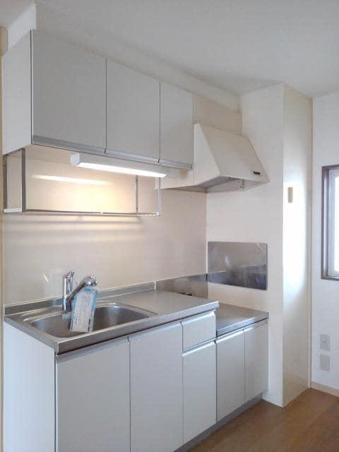 ニューシティ丸山 01030号室のキッチン