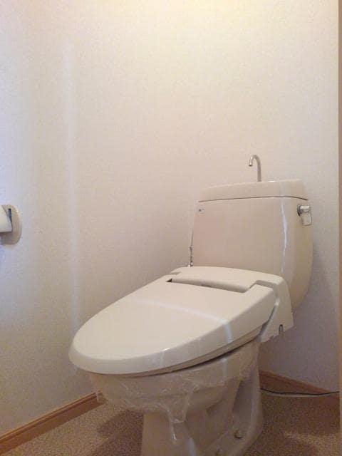 ニューシティ丸山 01030号室の洗面所