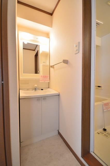 グランディールA 02040号室の洗面所