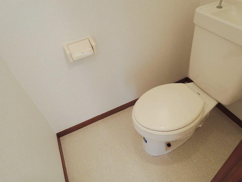 エルディムロックスプリングB 01030号室のトイレ