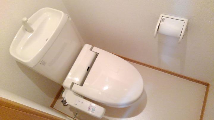 パインズデフィⅡ 02030号室のトイレ