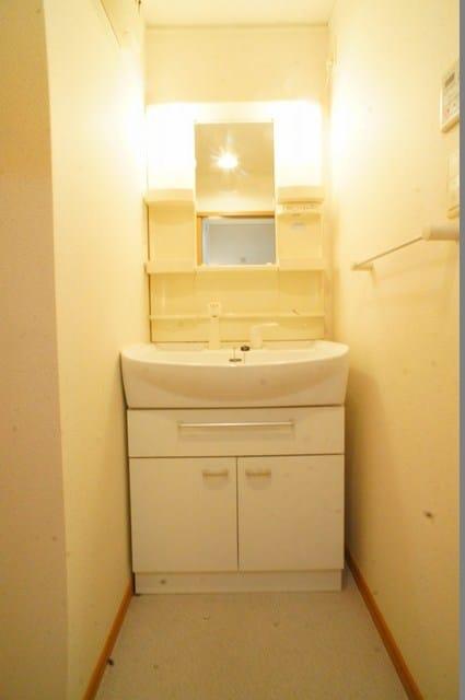 ル-ラルハ-モニ-TI B 02040号室の洗面所