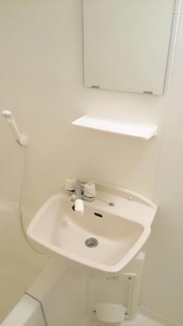 スプリングフィールド原市 01030号室の洗面所