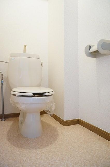 フォレストコートB 02040号室のトイレ