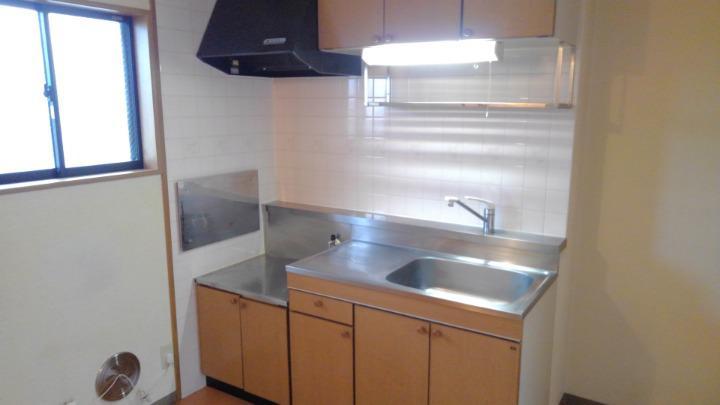 ドリーミーハウスT 02010号室のキッチン
