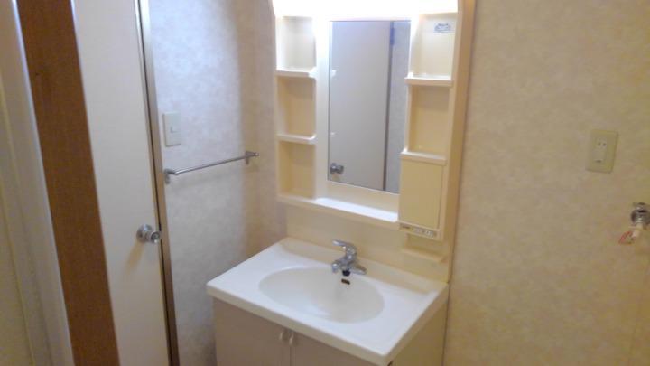 ドリーミーハウスT 02010号室の洗面所