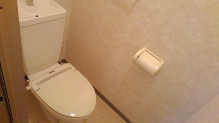 ドリーミーハウスT 02010号室のトイレ