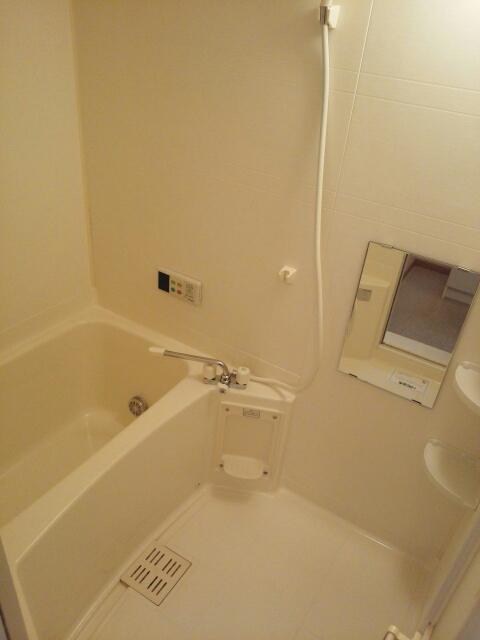 プラシドB 02010号室の風呂
