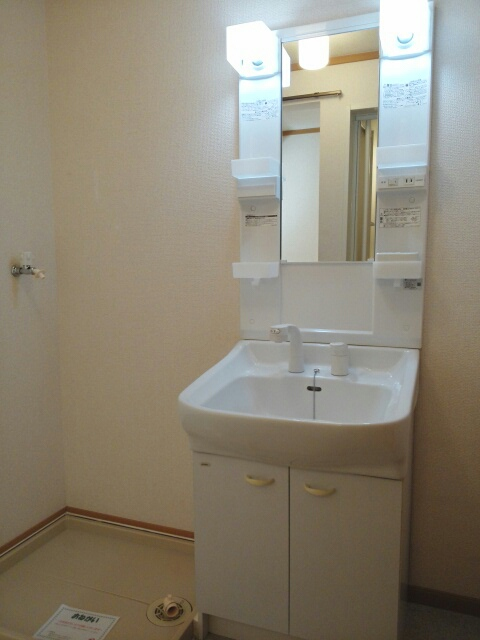 プラシドB 02010号室の洗面所