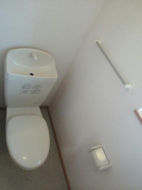 プラシドB 02010号室のトイレ