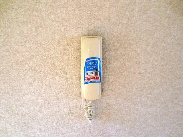 リバティハイムⅡ 01010号室のセキュリティ