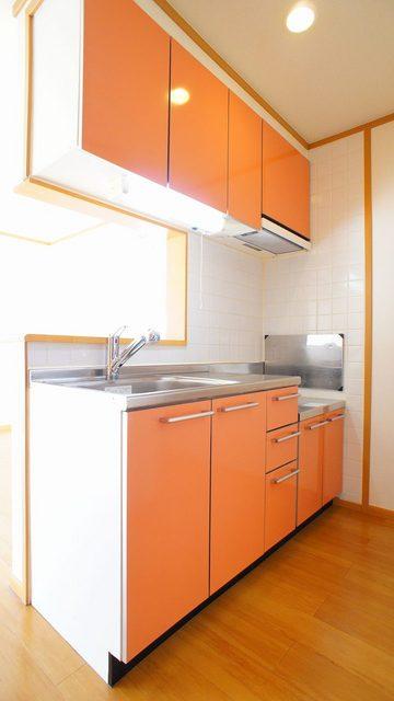 ファンタジアC 02030号室のキッチン