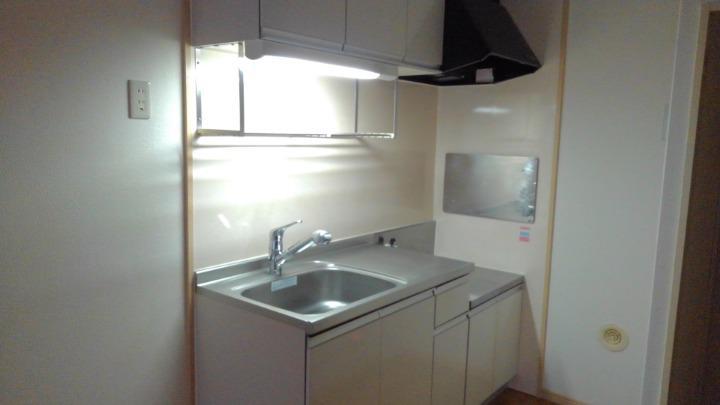 エルディム北C 01010号室のキッチン