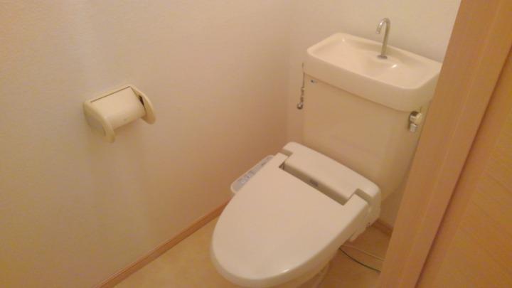 エルディム北C 01010号室のトイレ