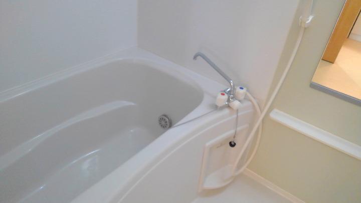 シャン・ド・フルール 01020号室の風呂