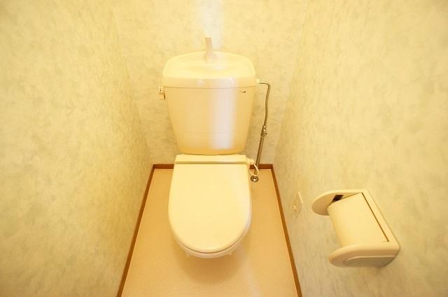 ブリッサ.セレ-ノA 02020号室のトイレ