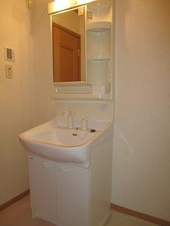 コルティーレ B 02020号室の洗面所