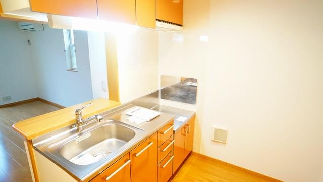 ラ・ルミエ-ル・メゾン Ⅲ 01020号室のキッチン