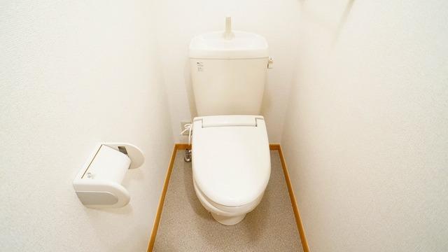 ラ・ルミエ-ル・メゾン Ⅲ 01020号室のトイレ