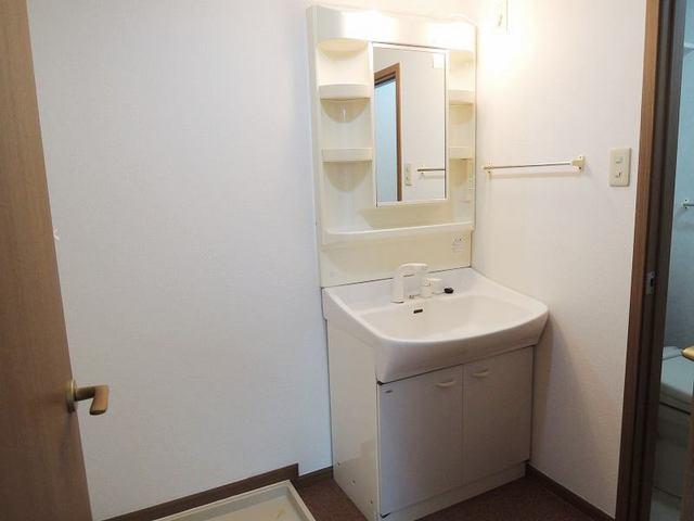アルカディア 01040号室の洗面所