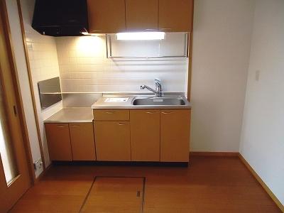 アウローラ 01030号室のキッチン