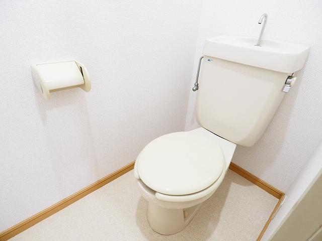 ドリームⅠ 01020号室のトイレ