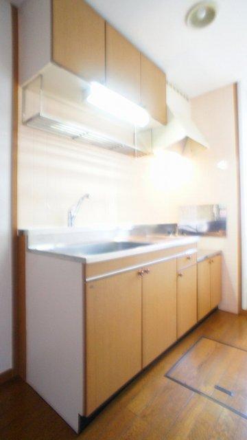 アラモードヴィラ 01030号室のキッチン